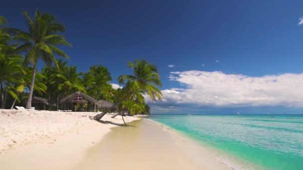 Palm Trees egy trópusi strand sziget