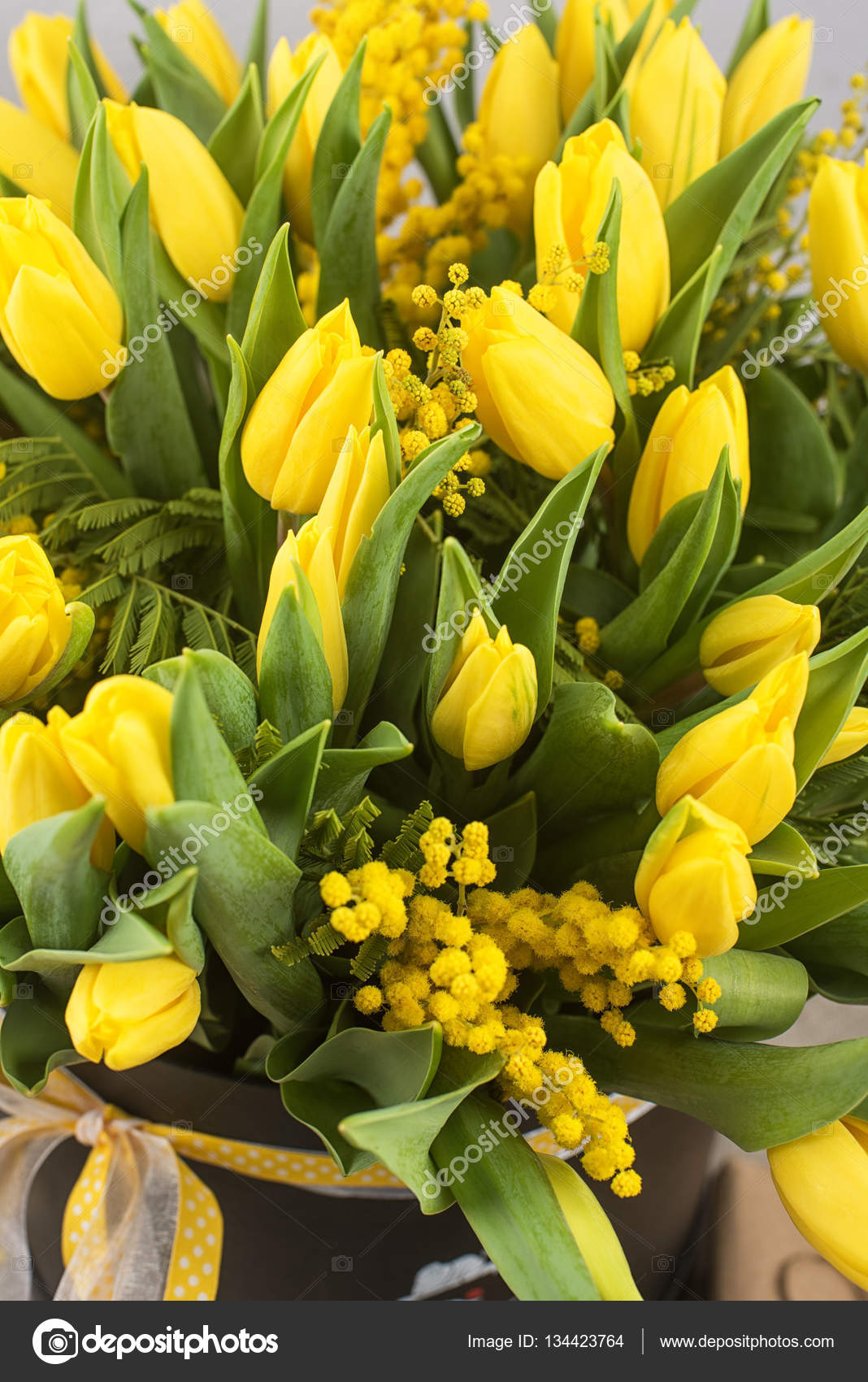 Mazzo Di Fiori Mimosa.Bright Spring Bouquet Of Tulips And Mimosa Flowers Stock Photo