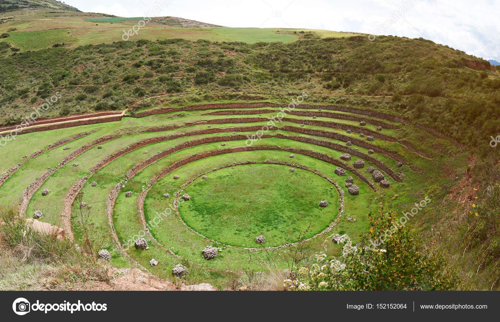 Terrazas Antiguas Del Inca Fotos De Stock Dimarik 152152064