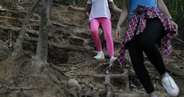 Lidé skupiny Trekking v lesní procházka z kopce, Treen pomáhat si navzájem, přátel turisty na výlet společně