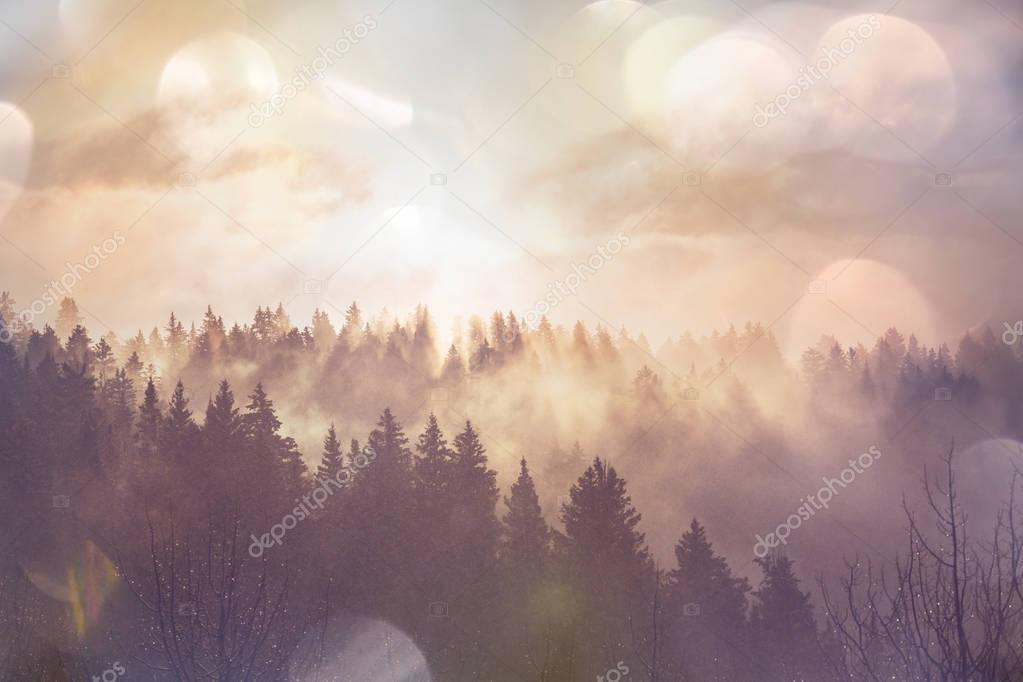 misty Fog in mountains