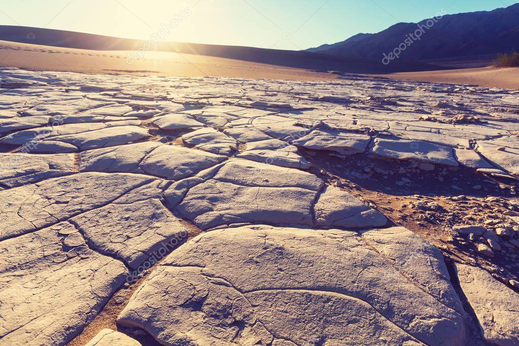 Drylands in the desert scenic view