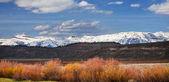 Grand teton national park, wyoming, Stati Uniti