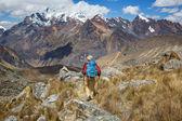 Fotografia Scena di escursionismo nelle montagne della Cordillera, Perù