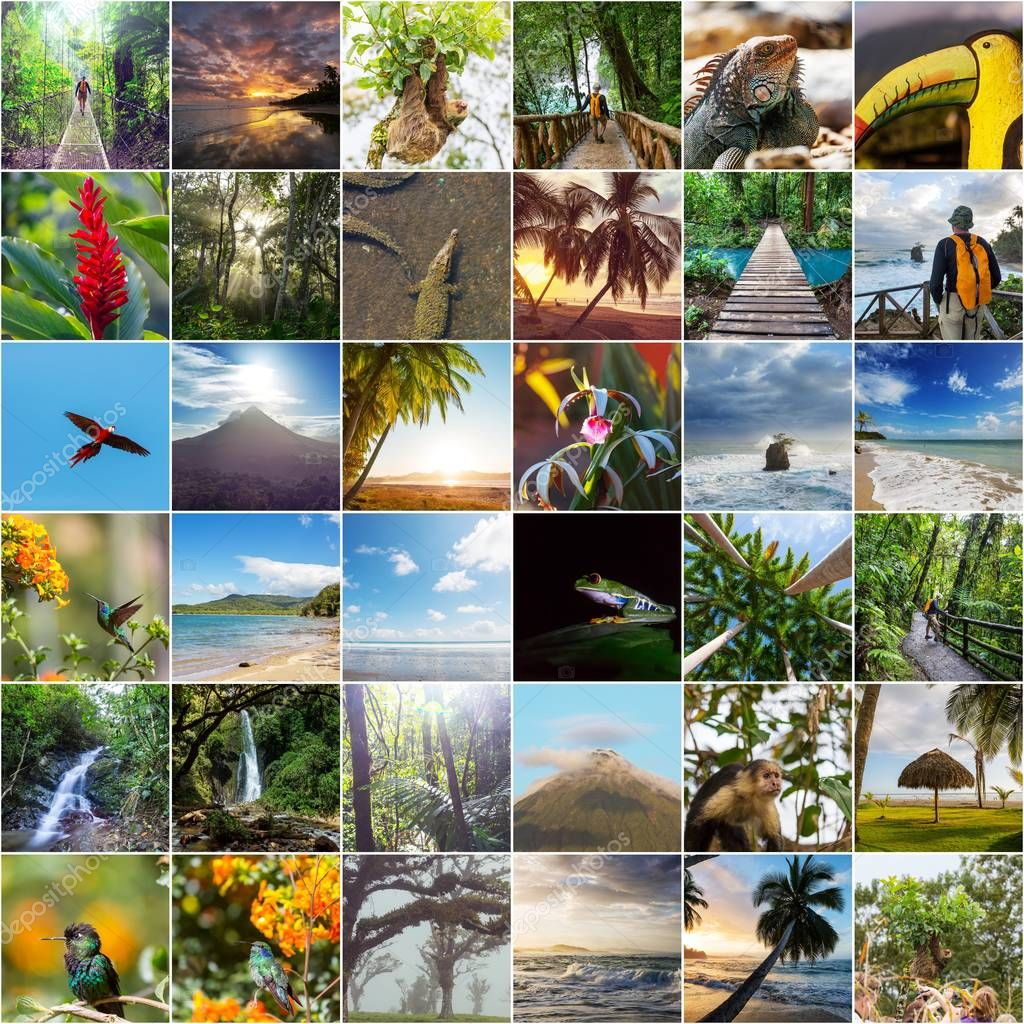 A collage of diverse landscape and animal images  of Costa Rica.