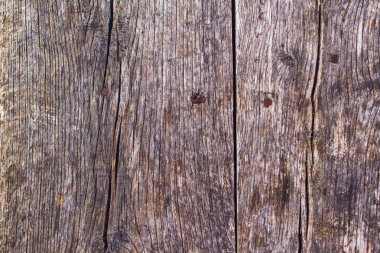 Rustic wooden surface with rusty nails