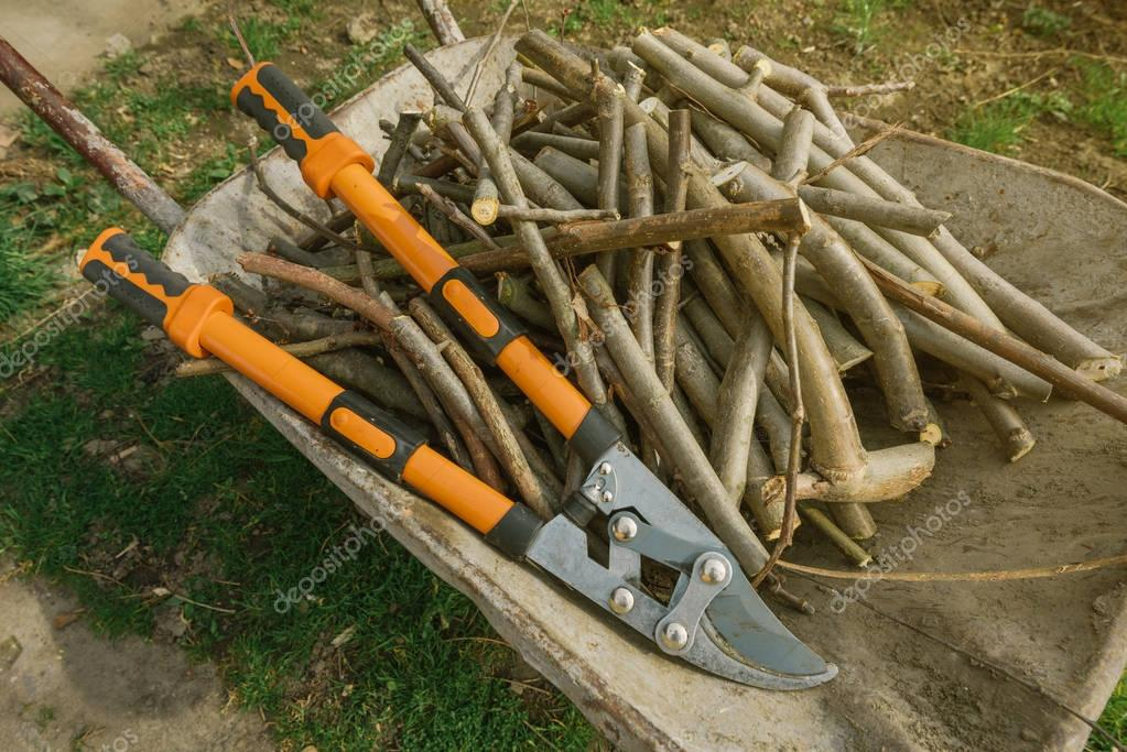 Loppers and branches