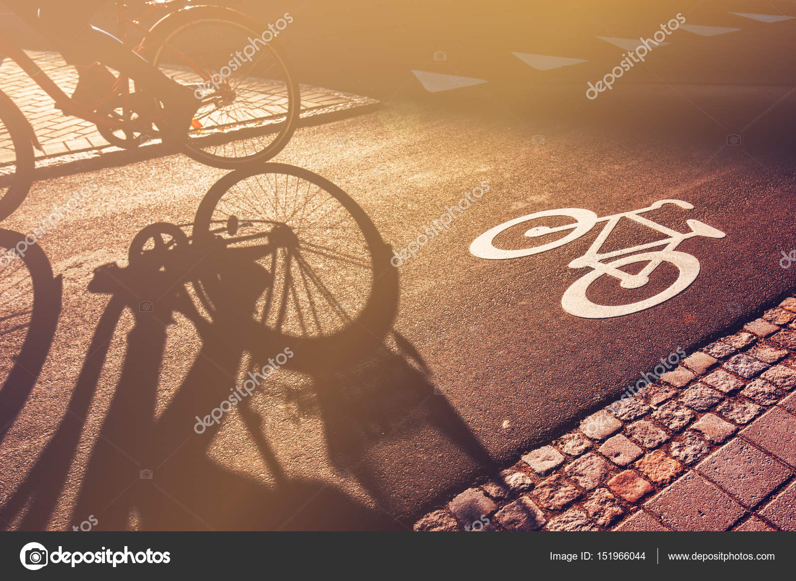 Schatten des Radfahrers auf Fahrradweg — Stockfoto © stevanovicigor ...