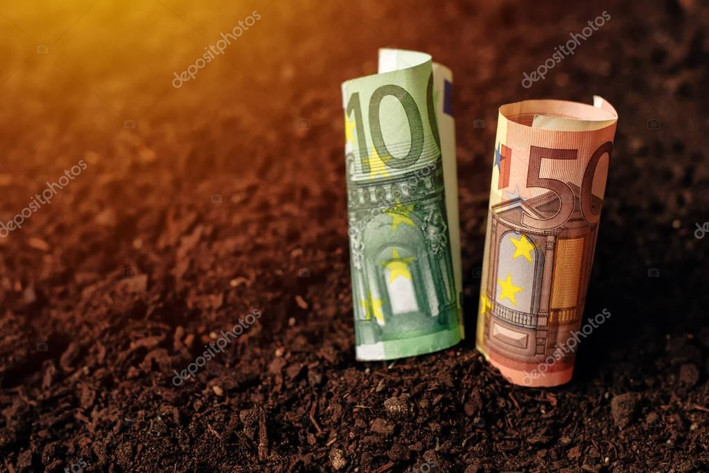 Euro banknotes cash money in soil ground, income in agriculture