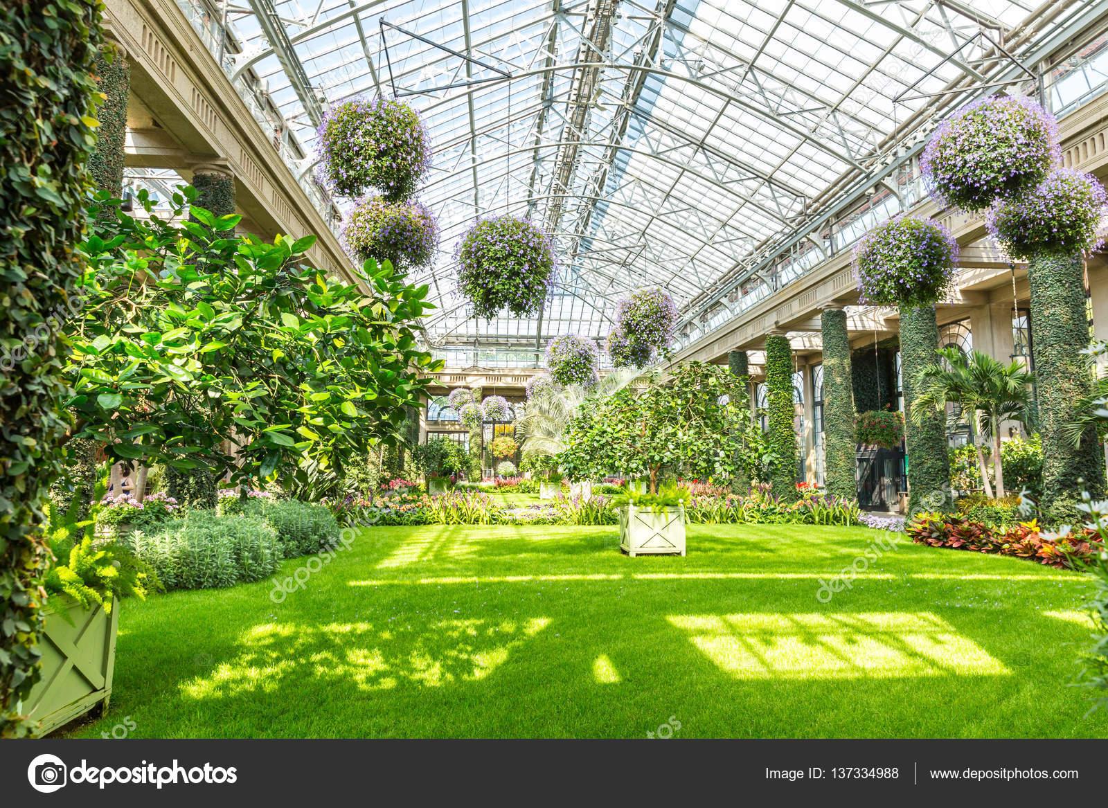 Jardín Botánico de invernadero — Fotos de Stock © Nomadsoul1 #137334988