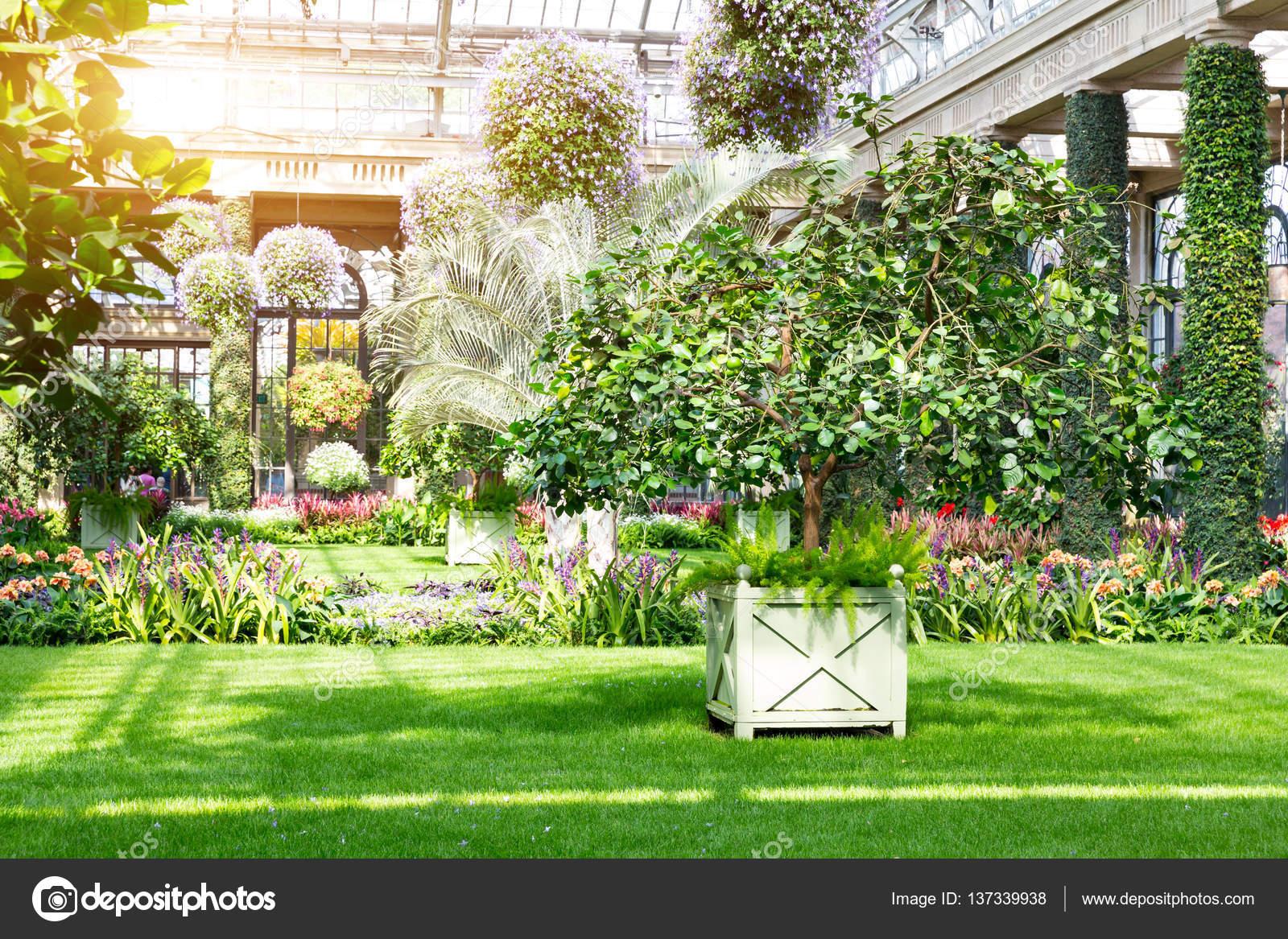 Jardín Botánico de invernadero — Fotos de Stock © Nomadsoul1 #137339938