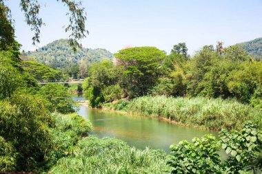Jungle river and tropical nature on Sri Lanka. Ceylon landscape stock vector