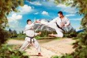 Fényképek Harcművészetek karate mester fekete öv, és fehér dzsúdóruhát harc képzés szabadtéri, rúgás, ugrás