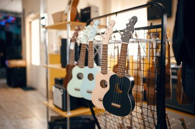 Row of ukulele acoustic guitars on showcase in music store, nobody. Assortment in musical instrument shop, professional equipment for musicians and performers