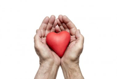 Old man's hands with red heart. Clipping path included.