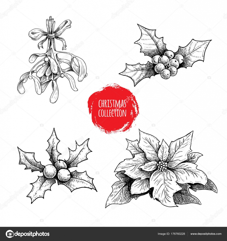 Christmas hand drawn plants collection holly berries poinsettia christmas hand drawn plants collection holly berries poinsettia mistletoe seasonal winter symbols decorations for greeting cards and invitations buycottarizona Image collections