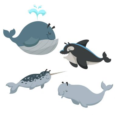 Cartoon sea animals set. Whale with fountain, killer whale orca, white beluga whale and narwhal. Sea and nord ocean animals. Kid education vector illustration collection.
