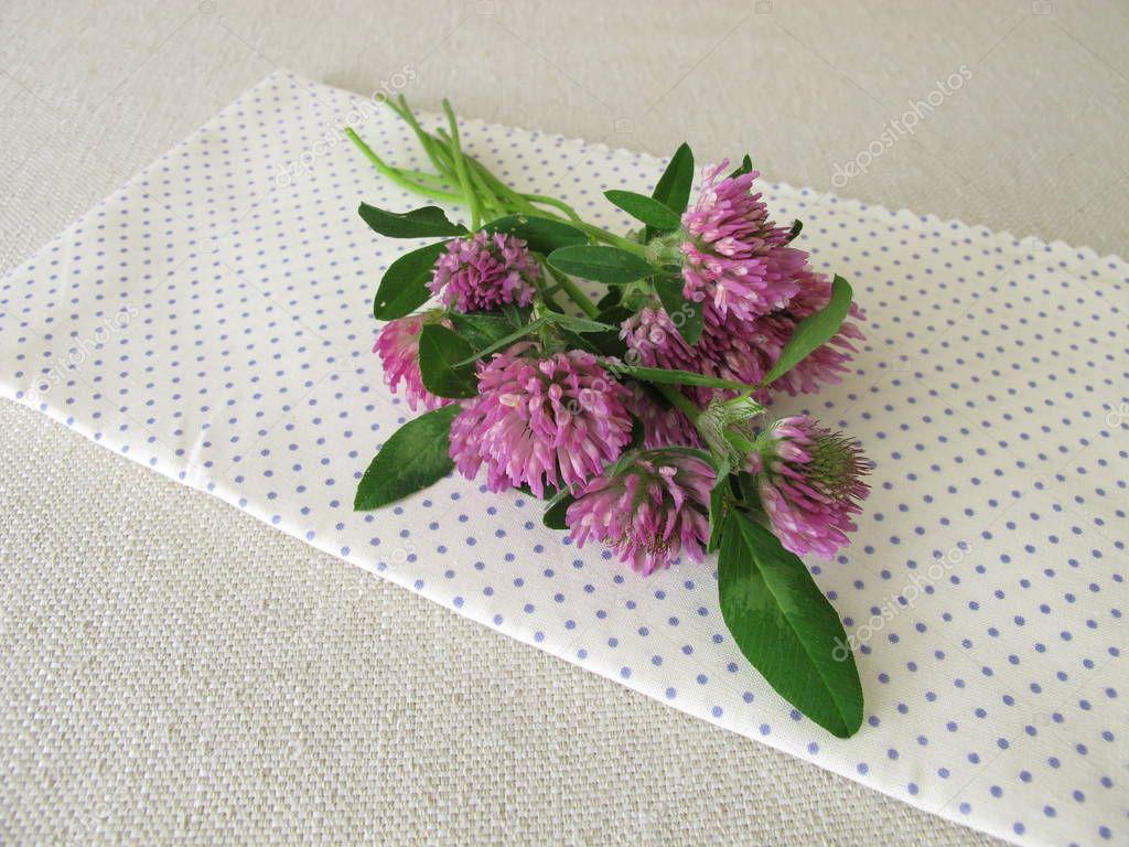 Цветы, клевер спб букеты