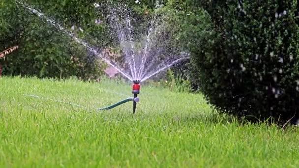 zavlažování plochy zahrady plastovým postřikovačem