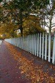 Fotografie Bílým plotem v podzimní sezóně