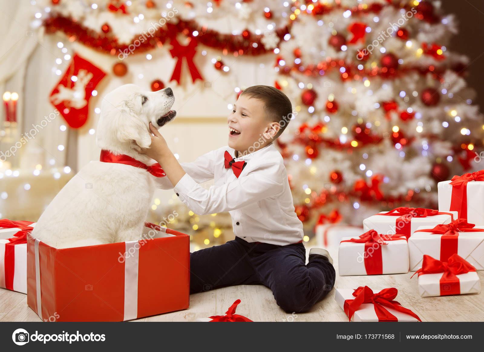 Child Getting Christmas Dog Puppy Present Happy Kid Boy Xmas Tree Stock Photo C Inarik 173771568