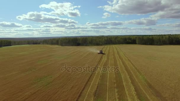 Aerial drone shot of a combine harvester