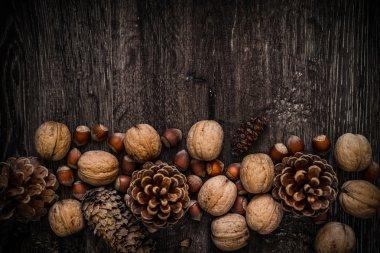 walnuts, fir cones, pine cones, on a dark wooden background