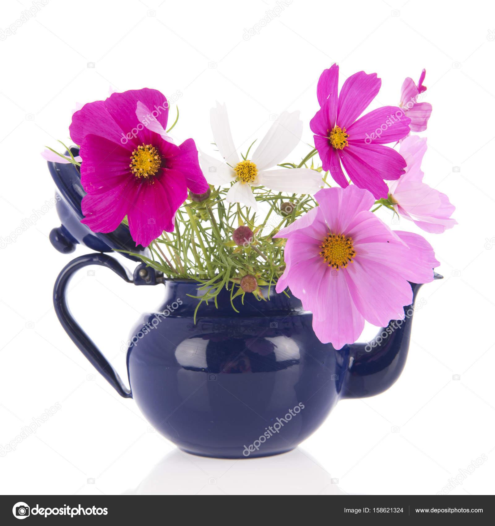 Pink Cosmos flowers in vase — Stock Photo © ivonnewierink #158621324