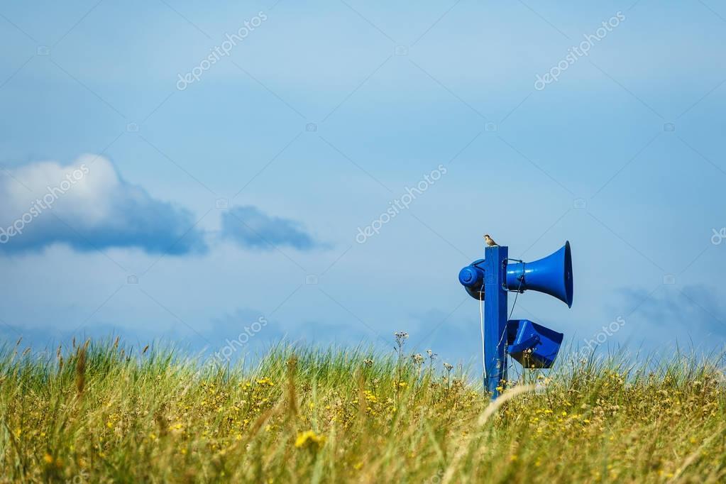Beach on shore of the Baltic Sea