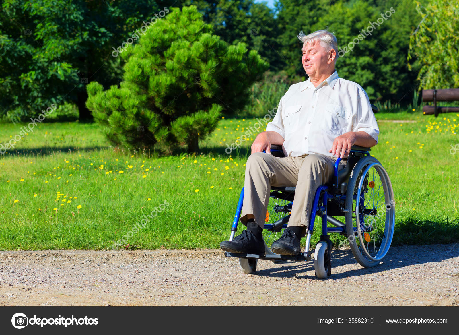 Png Happy Old Man On Wheelchair In The Park Stock Photo Adult Social Care Happy Old Man On Wheelchair In The Park Stock Photo Apeyron