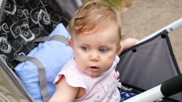 Krásné miminko v kočárku.