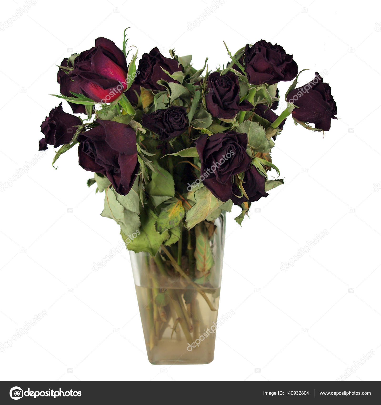 Dead Ted Roses Bouquet Stock Photo Tdoes1 140932804