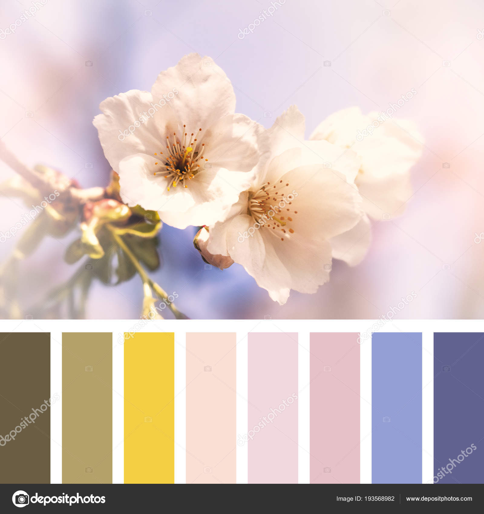 cherry blossom springtime colour palette complimentary colour
