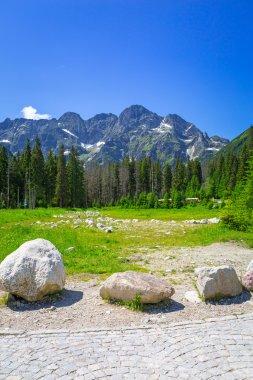 """Картина, постер, плакат, фотообои """"красивый пейзаж тропы в горах татр """", артикул 126642280"""