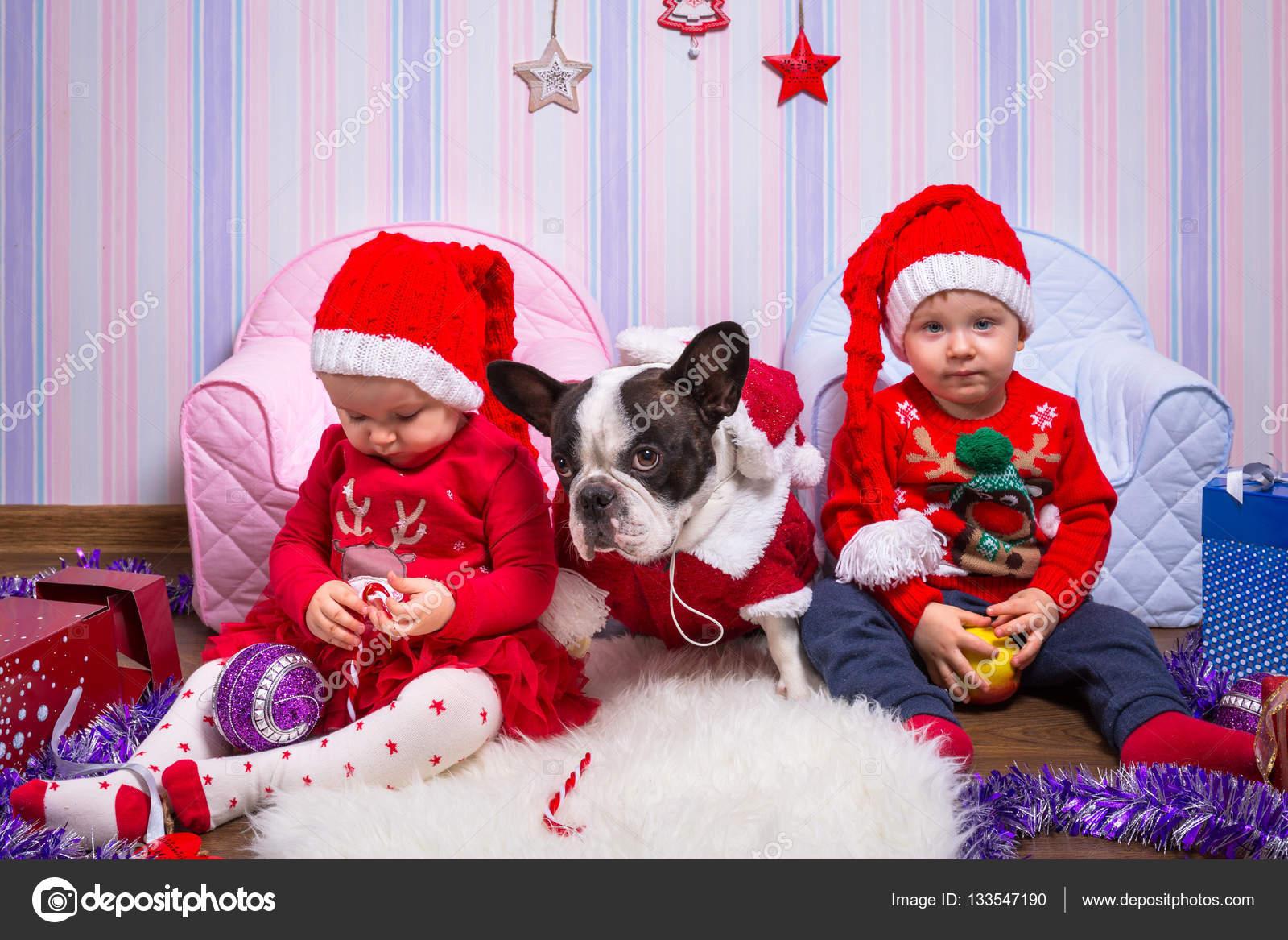 Jungen und Mädchen Zwillinge und französische Bulldogge auf ...