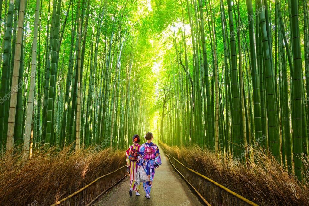 Arashiyama bamboo forest scenery