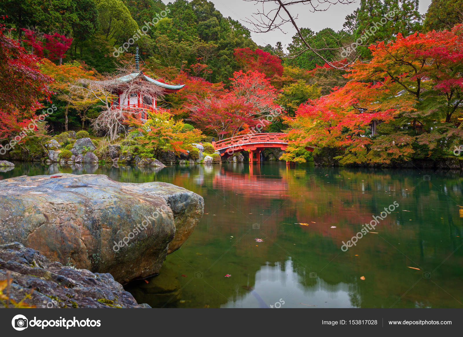 Beautiful autumn in japanese garden with colorful maple trees, Kyoto ...