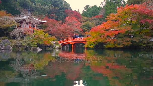 Daigo-ji temple s barevnými javorů na podzim, Kjóto