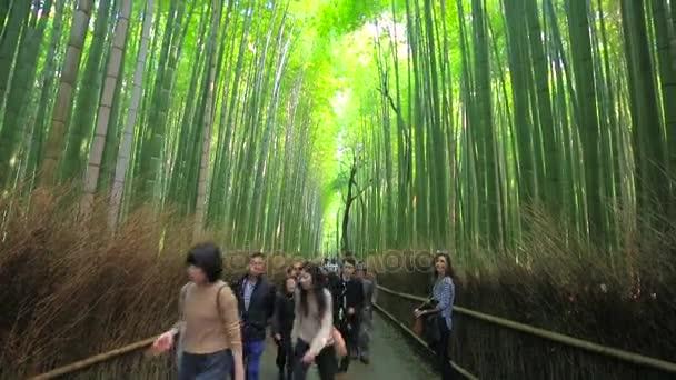 Turista az ösvényen, Arashiyama bambusz erdő a közelben Kyoto