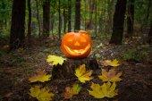 Halloween tök látszani a sötétben
