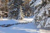 Monti Tatra in inverno nevoso, Polonia