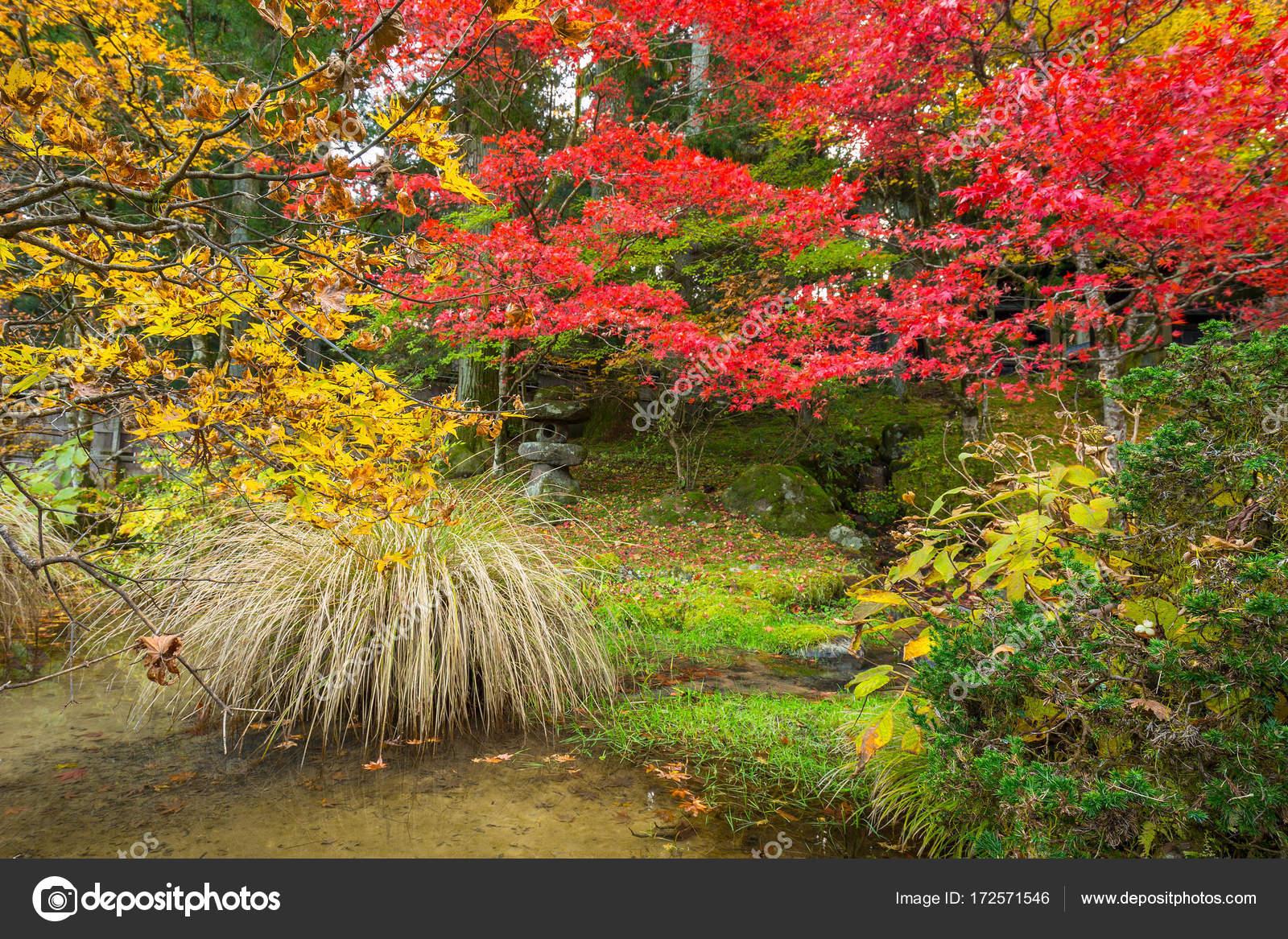 Paisajes otoales del Parque Nacional de Nikko Fotos de Stock