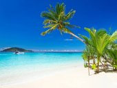 Photo Tropical beach scenery in Thailand