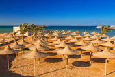 Photo Parasols on the beach of Red Sea in Hurghada, Egypt