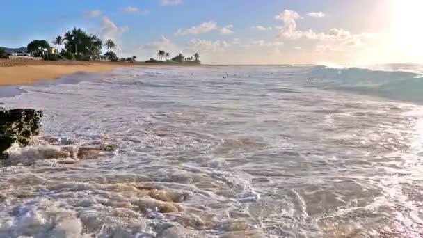 Waves crashing on Sandy beach with an udidentified people on Oahu, Hawaii