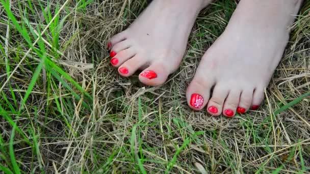 Ženské bosé nohy s červenými pedikúru na trávě
