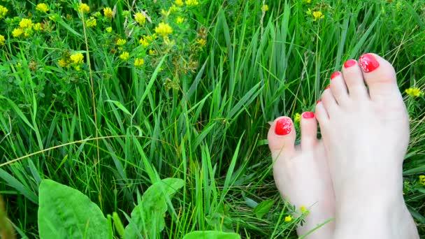 Krásně upravené ženské nohy s červeným pedikúru na zelené trávě