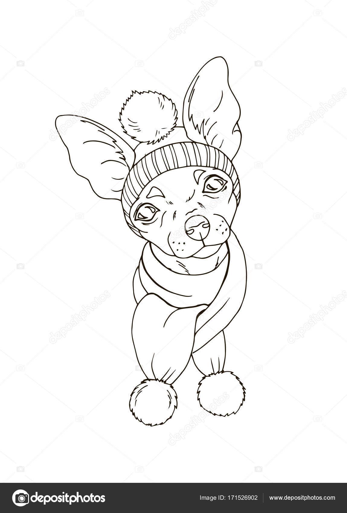 Köpek şapka Ve Atkı Portresi Stok Vektör Minyanna 171526902