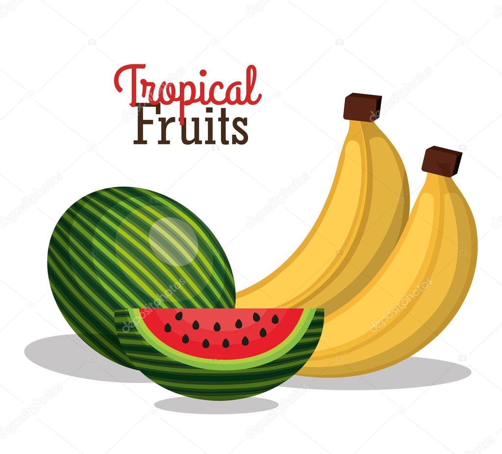 tropical fruits fresh banner