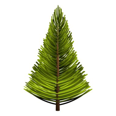 tree pine forest icon